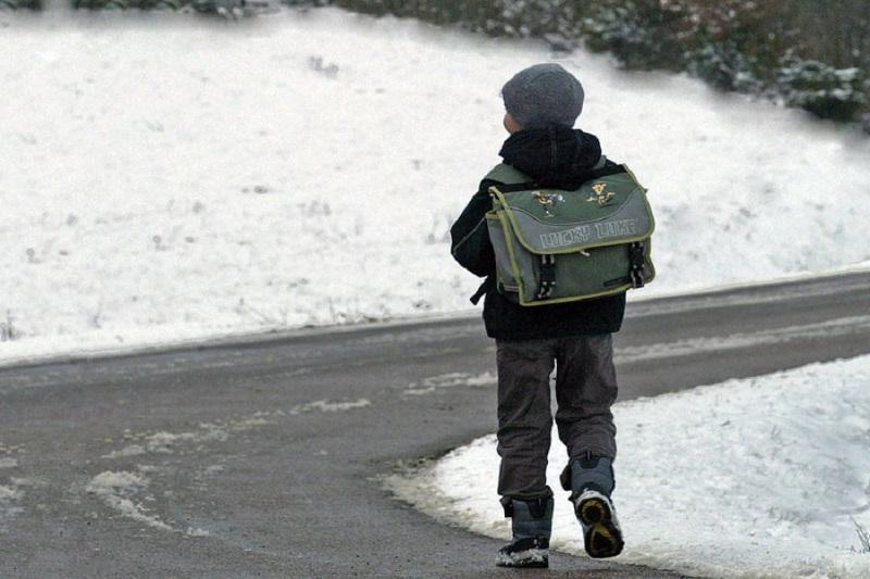 Из-за мороза в школах столицы и двух регионов отменены занятия