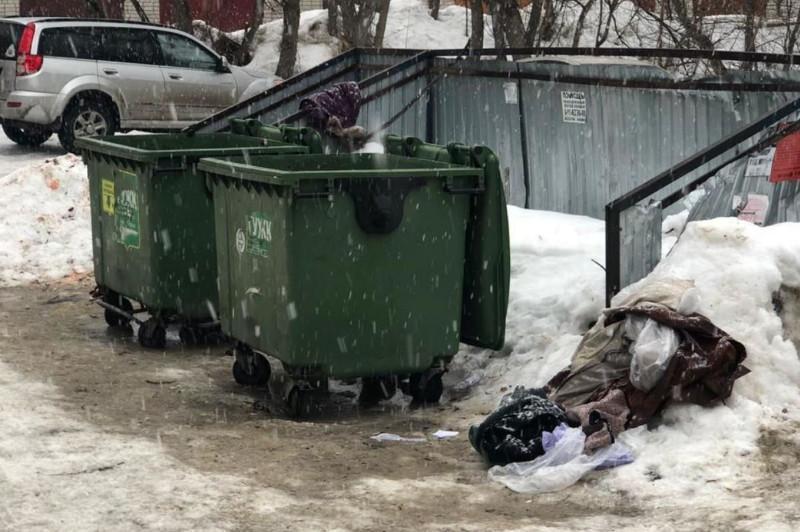 Мёртвого новорожденного обнаружили в мусорном контейнере в Костанае