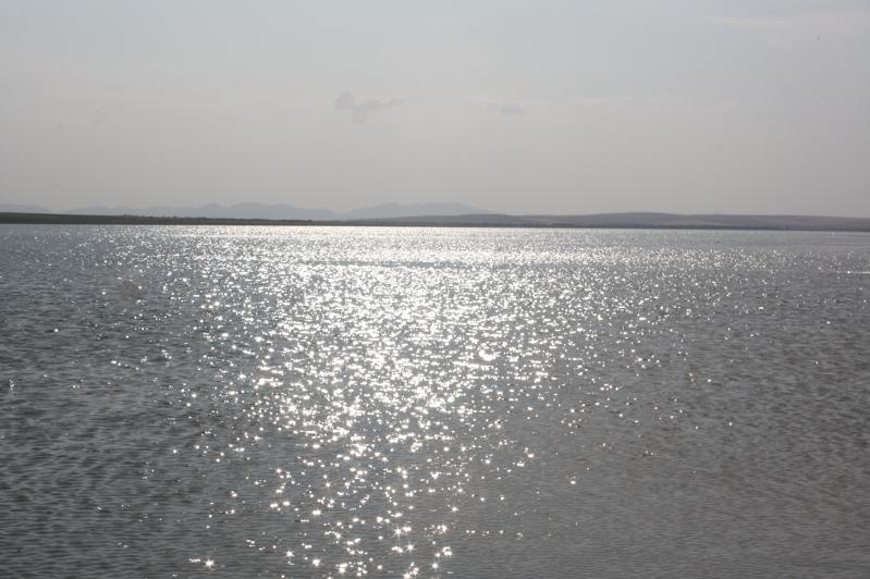 До 2021 года в Жамбылской области планируется строительство трех водохранилищ
