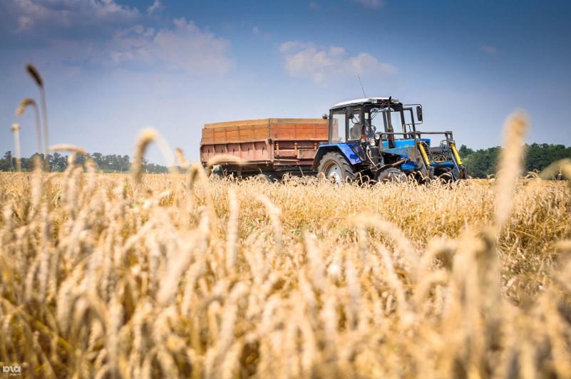 Как изменится система господдержки сельхозтоваропроизводителей в Казахстане