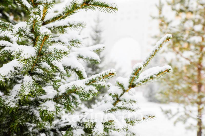 Какой будет погода в Казахстане в декабре
