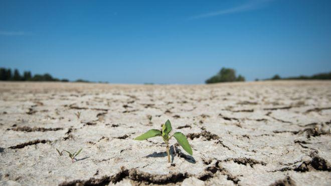 БҰҰ-ның климат жөніндегі конференциясы: 2010 - 2019 жылдар ең ыстық кезеңге айналды