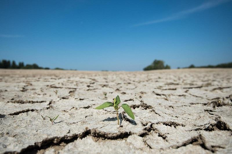 联合国报告:过去十年全球异常高温