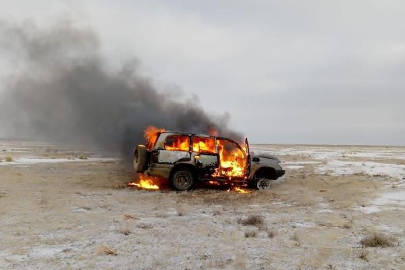 Охотившихся на сайгаков браконьеров задержали в Актюбинской области
