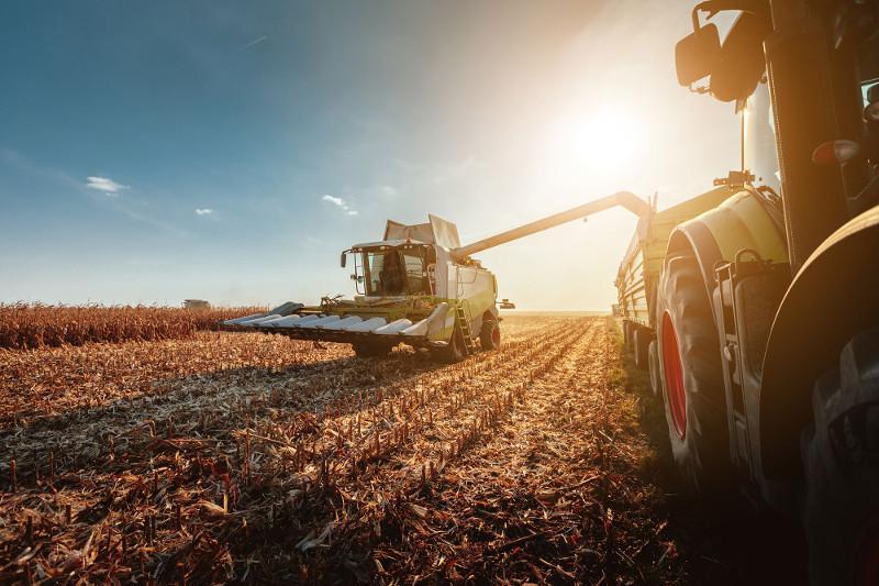 По росту продукции сельского хозяйства Жамбылская область выбилась в лидеры – аким