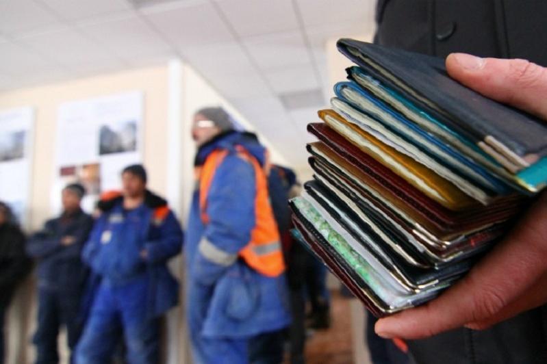 3 тысячи мигрантов из стран Центральной Азии работают в СКО