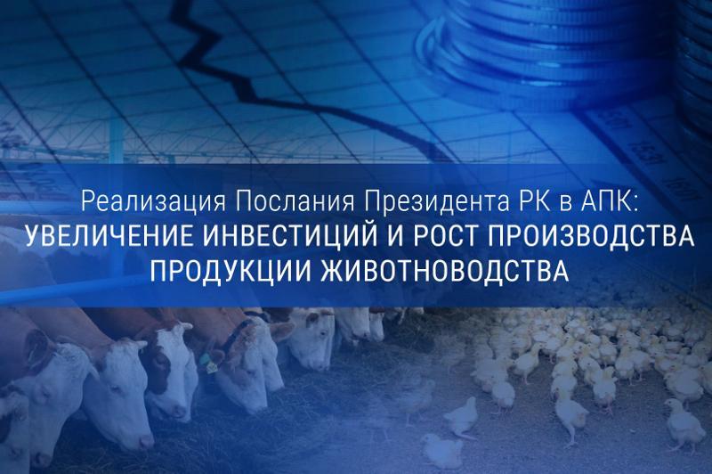 Реализация Послания Президента РК в АПК: увеличение инвестиций и рост производства продукции животноводства