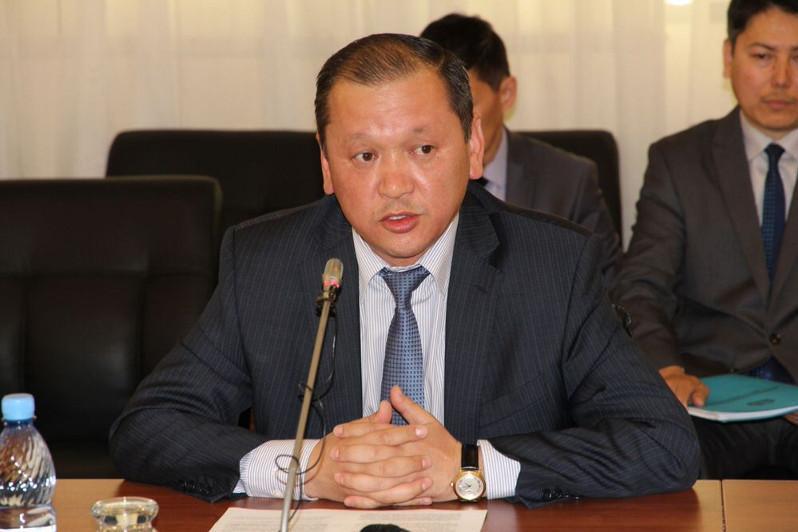Министр этникалық қазақтарға азаматтық берудегі өзгерістер туралы айтты