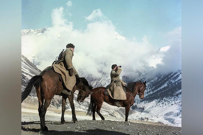 Круглосуточно охраняют ели в Иле-Алатауском заповеднике в преддверии Нового года