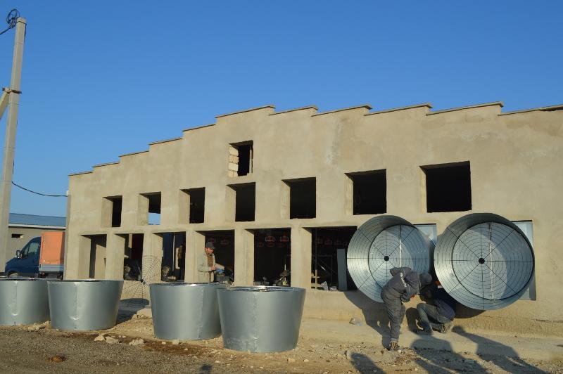 Маңғыстауда жылына 5 мың тонна құс етін өндіретін фабрика салынып жатыр