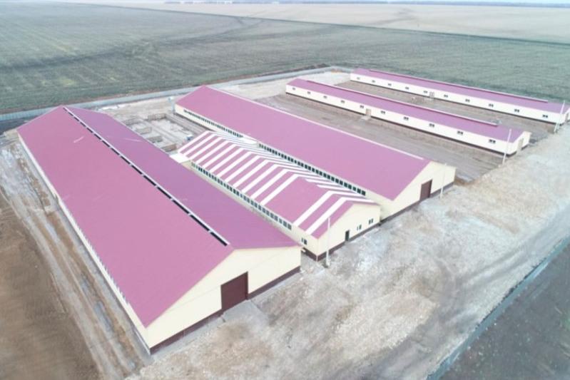 Ферму стоимостью более 1 млрд тенге построили в СКО