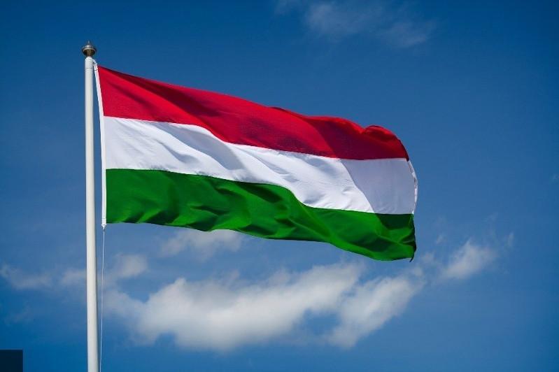 Euronews нұсқасы бойынша Венгриядағы жыл сөзі - «Қыпшақ»