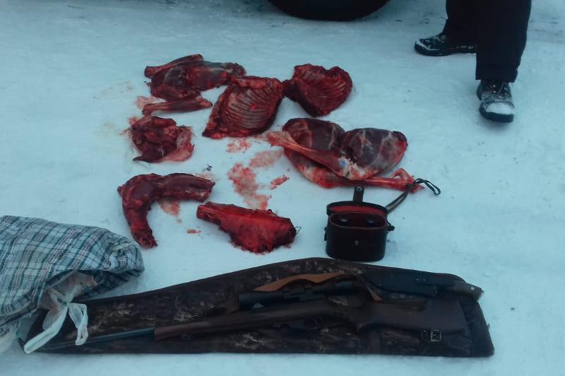 За баранину пытался выдать изъятое мясо браконьер в СКО