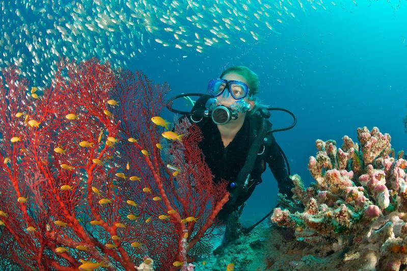 UNDP launches Ocean Innovation Challenge