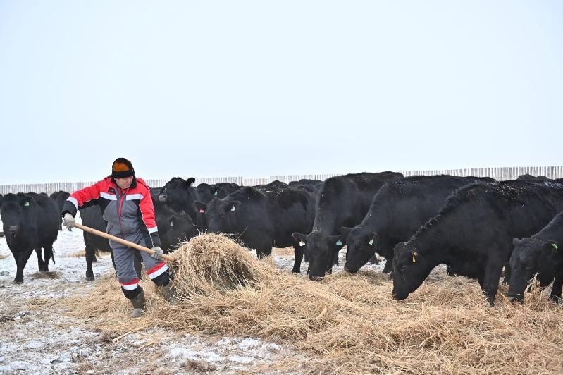 Мы видим реальные примеры помощи государства фермерам - Глеб Щегельский
