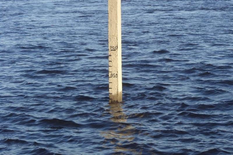 В КЧС рассказали о ситуации, сложившейся на реке Сырдарья