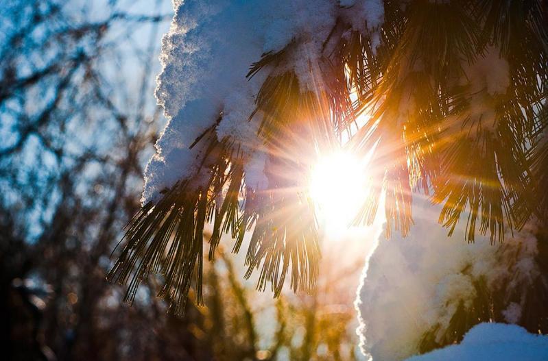 国家气象总局:哈萨克斯坦近日不会迎来严寒天气