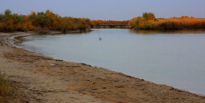 Дариядағы су Қызылордаға қауіп төндіріп тұрған жоқ