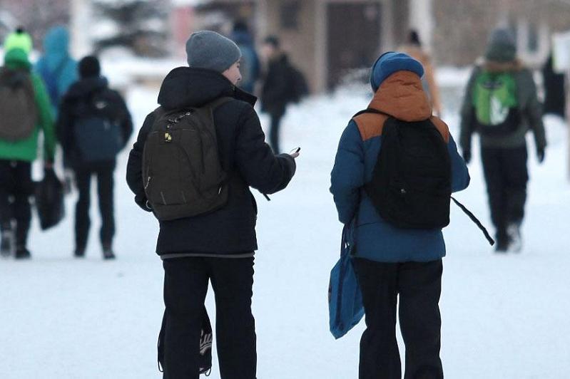 В некоторых районах ВКО отменены занятия в школах и колледжах