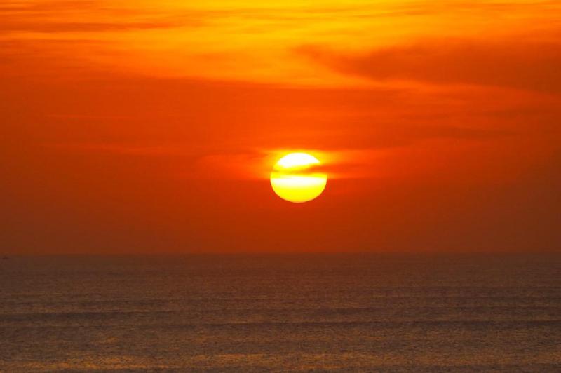 世界气象组织确认2019年是有记录以来第二热年份