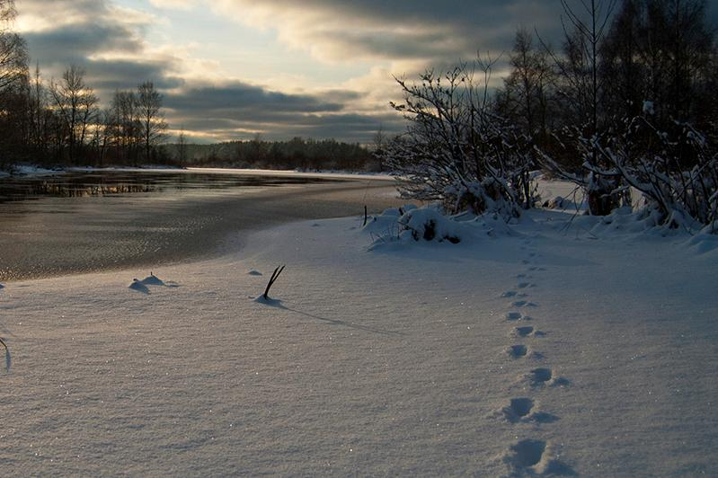 Lifeless body found by the riverbank in Uralsk
