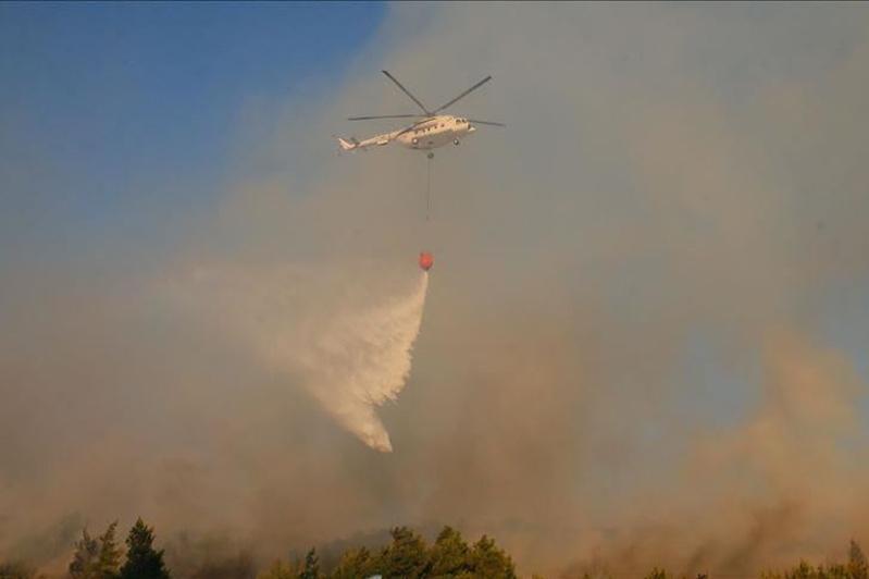 Australia: Air tanker dousing bushfire crashes, kills 3