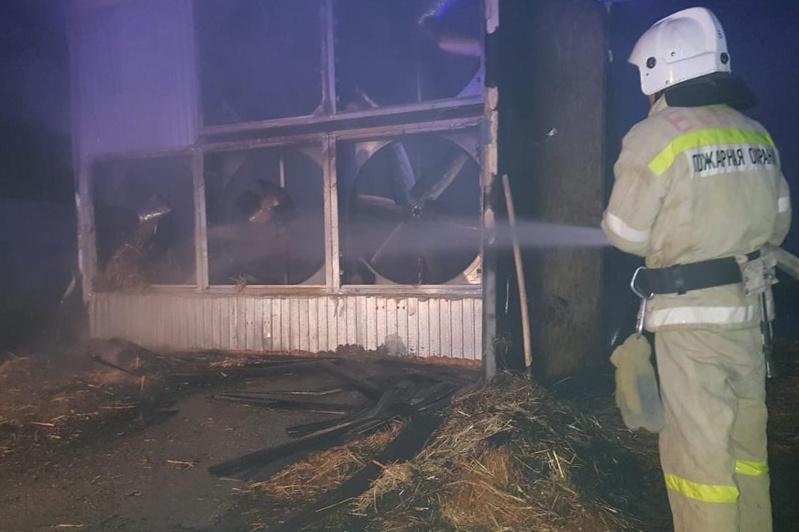 Птицефабрика горела в Туркестанской области