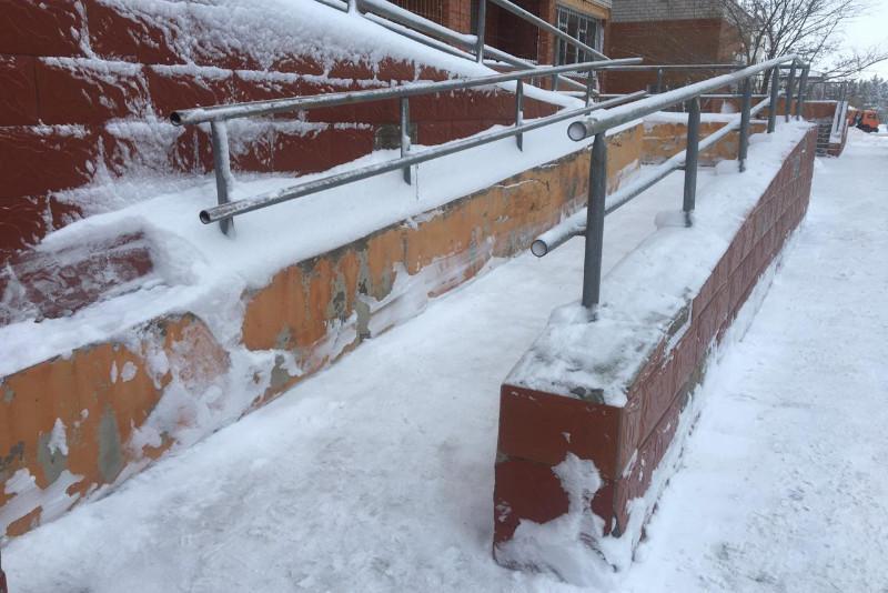 Сотрудники департамента экономических расследований вышли на уборку снега в Павлодаре