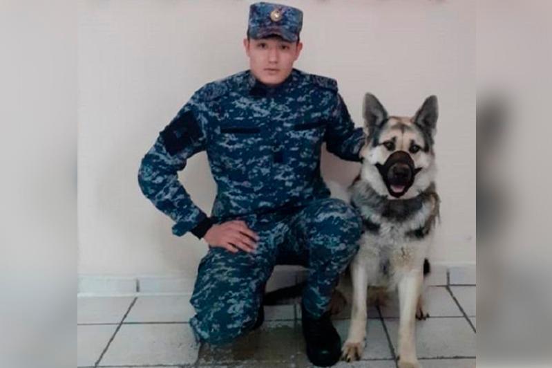 268 преступлений раскрыла акмолинская служебная собака Вия