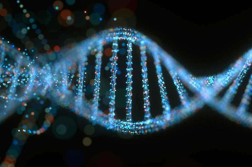 «Jumping genes» help stabilize DNA folding patterns: study