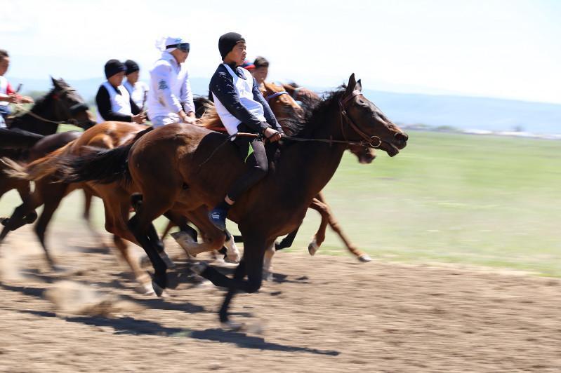 ШҚО-да Абайдың 175 жылдығына орай ұлттық ат спортынан фестиваль өтеді