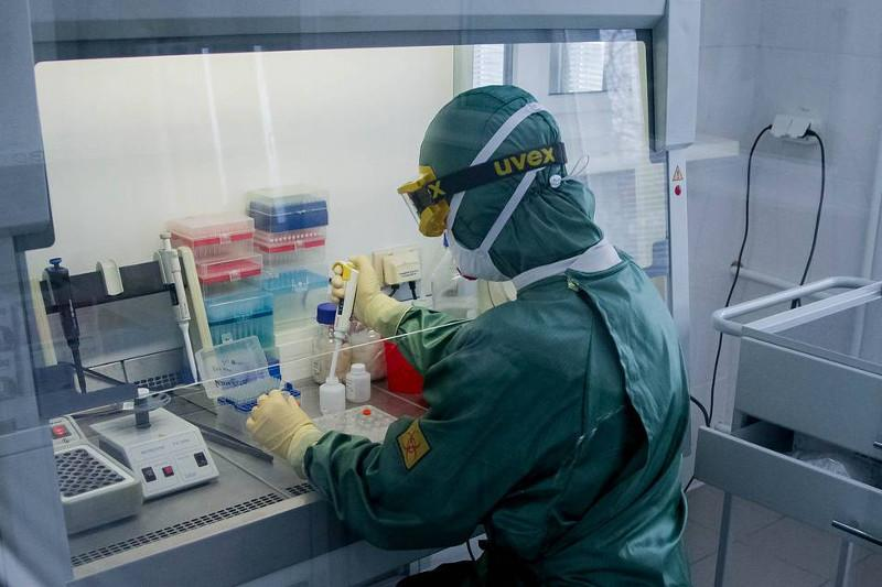 Australian scientists successfully grow China's new coronavirus in lab