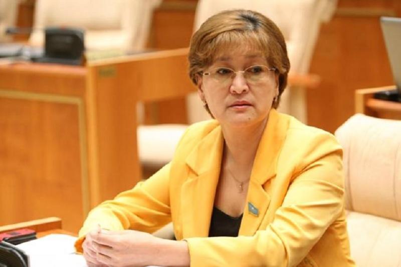 Ограничить для детей доступ к онлайн-играм предлагает депутат Майра Айсина