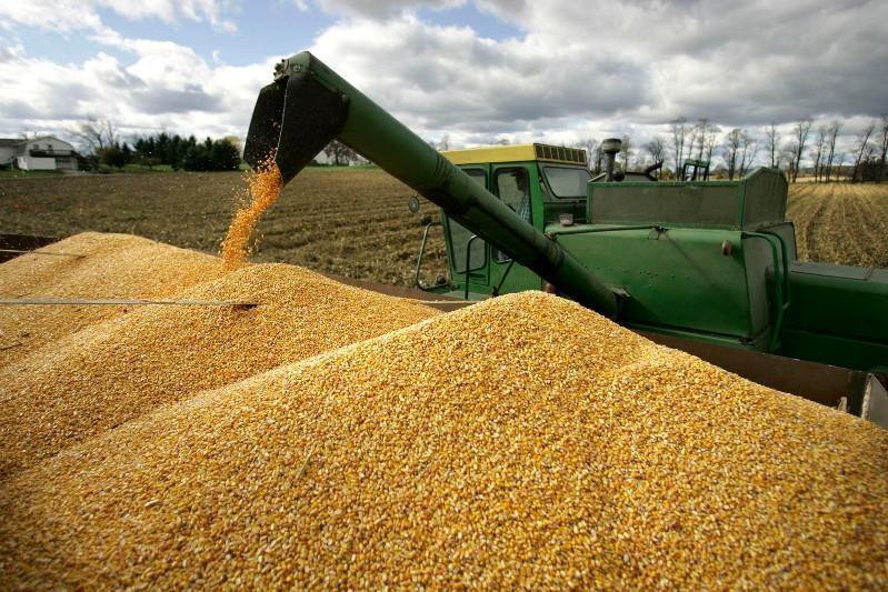 Turkey increases export of grain and legumes to Kazakhstan