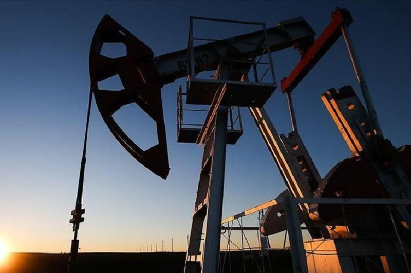 Oil up as coronavirus cases slow to support demand
