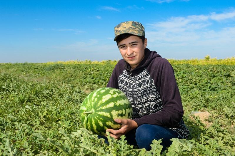 Syr óńirinde agroónerkásip keshen ónimderiálemniń 19 eline eksporttalady