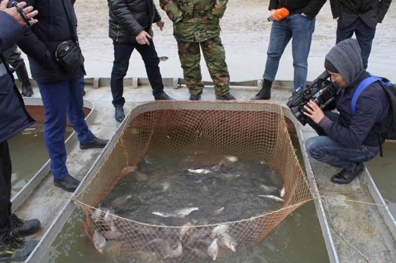 Развитие рыбного хозяйства является одной из приоритетных задач - Махамбет Досмухамбетов