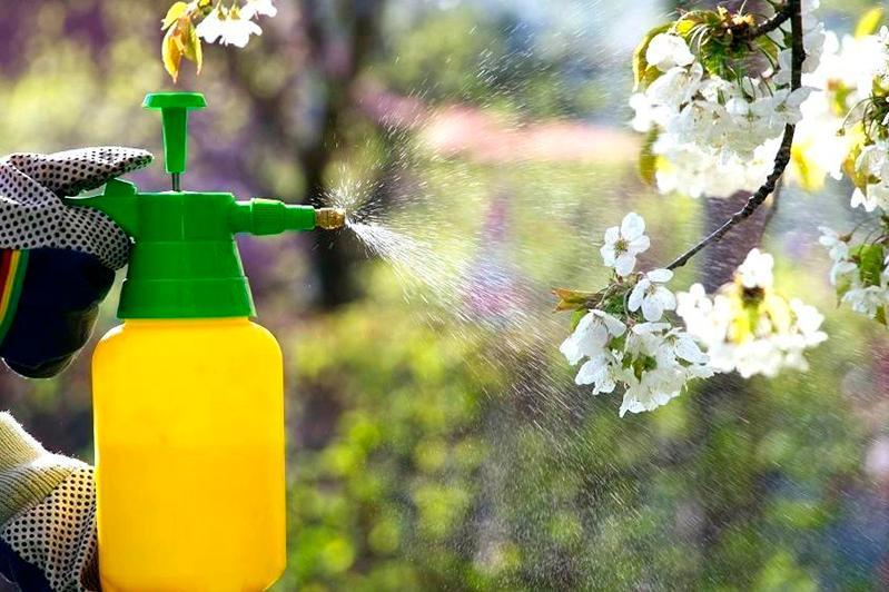 哈萨克斯坦对毒性杀虫剂实施临时销售禁令