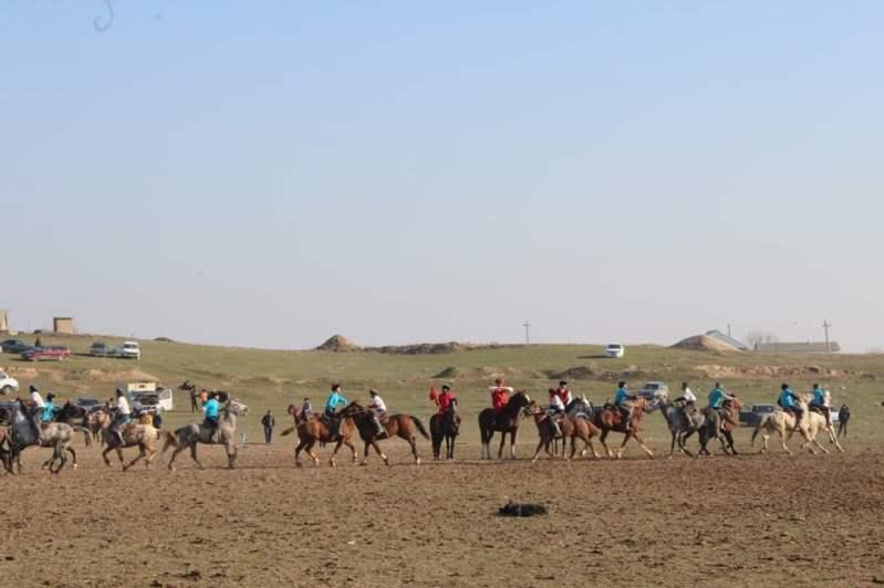Түркістан облысының Келес ауданында көкпарданчемпионат өтті