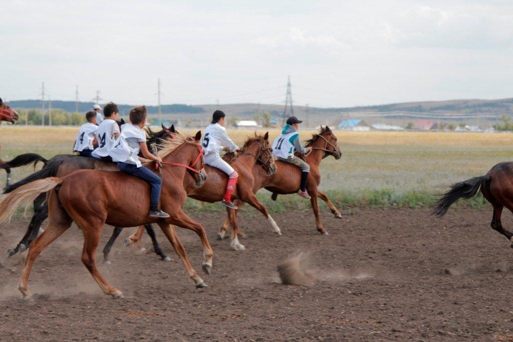 Ұлттық спорттың 20-дан астам түріне ерекше көңіл бөлінді -  Ақтоты Райымқұлова