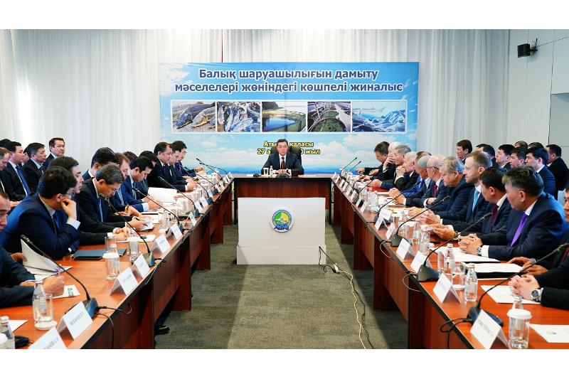 Аскар Мамин провел совещание по вопросам развития рыбной отрасли страны в Атырау