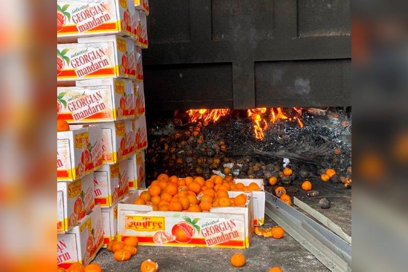 Грузиядан әкелінген 1 тонна қауіпті мандарин жойылды