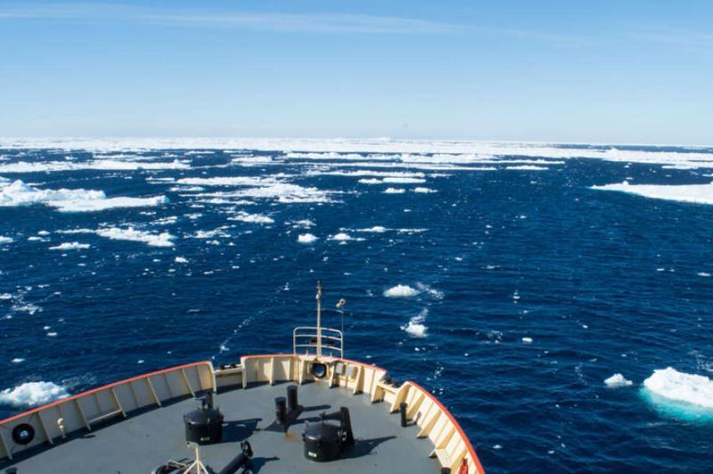 Антарктида соҳилида янги орол пайдо бўлди