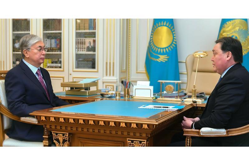 Президент төтенше жағдай режимін қамтамасыз ету жөніндегі мемкомиссия жұмысымен танысты