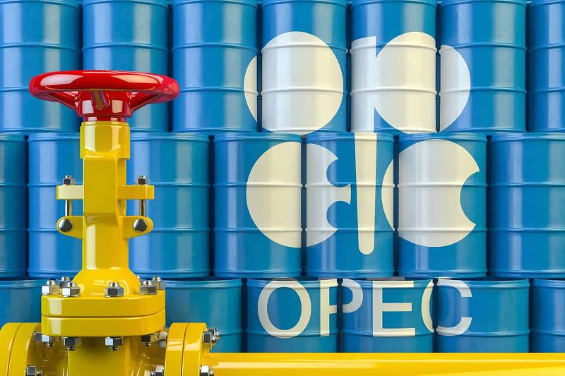 OPEC daily basket price stands at $30.36 a barrel Tuesday