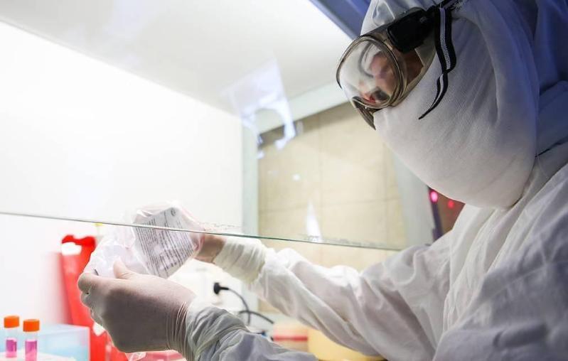 俄罗斯利用俄患者完成新冠病毒基因组测序