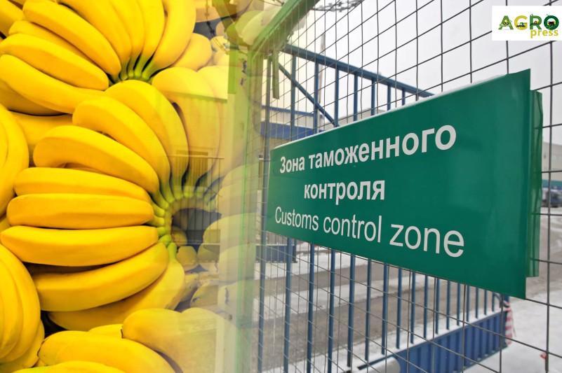 ҚР АШМ Ресейден әкелінген 19 тонна бананды ел аумағына кіргізбеді
