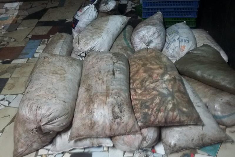 БҚО-да 1,7 тоннадан астам балық тасымалдаған жүргізуші ұсталды