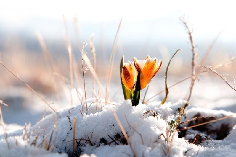 Погода без осадков будет в Казахстане 29 марта