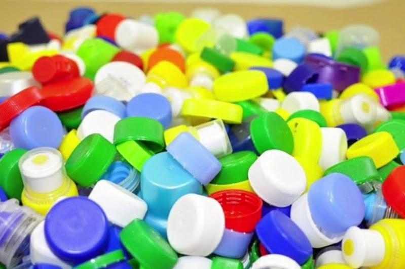 Пластикті ыдырататын микроағза табылды – Әлемдік баспасөзге шолу